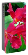 Orchid Series 3 Portable Battery Charger