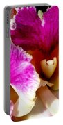 Orchid Series 6 Portable Battery Charger