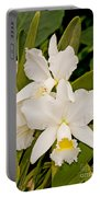 Orchid Sophronitis Portable Battery Charger