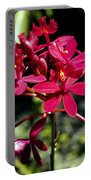 Orchid Study V Portable Battery Charger