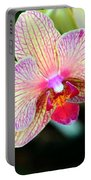 Orchid Trio Portable Battery Charger