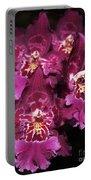 Orchid Vuylstekeara Aloha Passion Portable Battery Charger