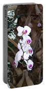 Orchids In The Opryland Hotel In Nashville Tennessee Portable Battery Charger