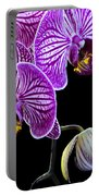 Orchids On Black Background Portable Battery Charger