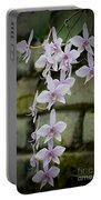 Orchids Pictures 47 Portable Battery Charger
