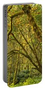 Oregon Rainforest Portrait Portable Battery Charger by Adam Jewell
