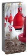 Organic Chicken Coop  Portable Battery Charger