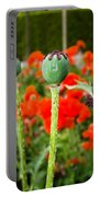 Oriental Poppy Seed Pod Portable Battery Charger