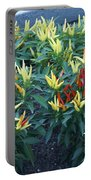 Ornamental Peppers...   # Portable Battery Charger