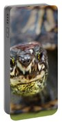 Box Turtle Close-up Portable Battery Charger