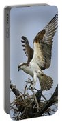 Osprey Building A New Nest Portable Battery Charger