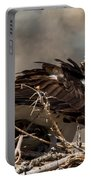 Osprey Family Huddle Portable Battery Charger by John Daly