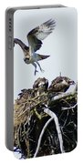 Osprey In Flight Over Nest Portable Battery Charger