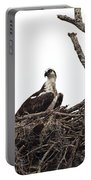 Osprey On A Nest In The Everglades Portable Battery Charger