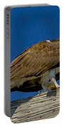 Osprey With Fish In Talons Portable Battery Charger