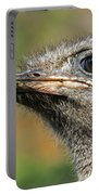 Ostrich 4 Portable Battery Charger