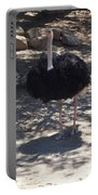 Ostrich Dance Portable Battery Charger