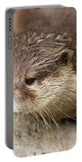 Otter Closeup Portable Battery Charger