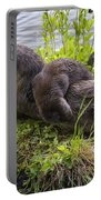 Otter Family Fun Portable Battery Charger