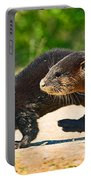 Otters Crossing The Road  Portable Battery Charger
