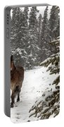 Out For A Walk Portable Battery Charger