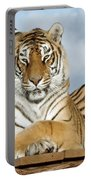 Out Of Africa Tiger 3 Portable Battery Charger