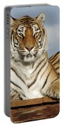 Out Of Africa Tiger 4 Portable Battery Charger