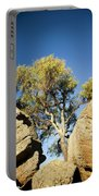 Outback Tree Portable Battery Charger