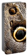 Owl Butterfly Wing Portable Battery Charger