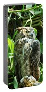 Owl Portrait 2 Portable Battery Charger