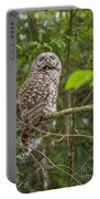 Up - Owl Portable Battery Charger