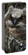 Owlet On The Watch Portable Battery Charger
