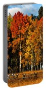 Oxbow Autumn Portable Battery Charger