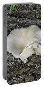 Oyster Mushroom Portable Battery Charger