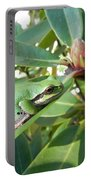 Pacific Chorus Frog On A Rhodo  Portable Battery Charger
