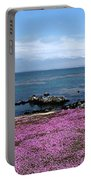 Pacific Grove California Portable Battery Charger