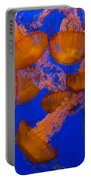 Pacific Sea Nettle Cluster 2 Portable Battery Charger