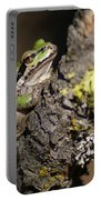 Pacific Treefrog Portable Battery Charger