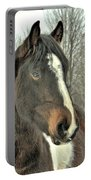 Paint Horse In Winter Portable Battery Charger