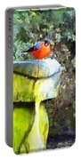 Painted Bullfinch Trio Portable Battery Charger