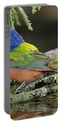Painted Bunting Drinking Portable Battery Charger