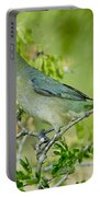Painted Bunting Hen Portable Battery Charger