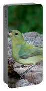 Painted Bunting Passerina Ciris Drinking Portable Battery Charger