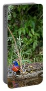 Painted Buntings Bathing Portable Battery Charger