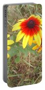 Painted Daisies Portable Battery Charger