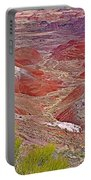 Painted Desert From Rim Trail In Petrified Forest National Park-arizona Portable Battery Charger