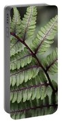 Painted Fern Portable Battery Charger