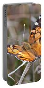 Painted Lady Square Portable Battery Charger