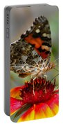 Painted Lady Portable Battery Charger