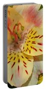 Painted Lily  Portable Battery Charger